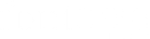 logo-vector-white